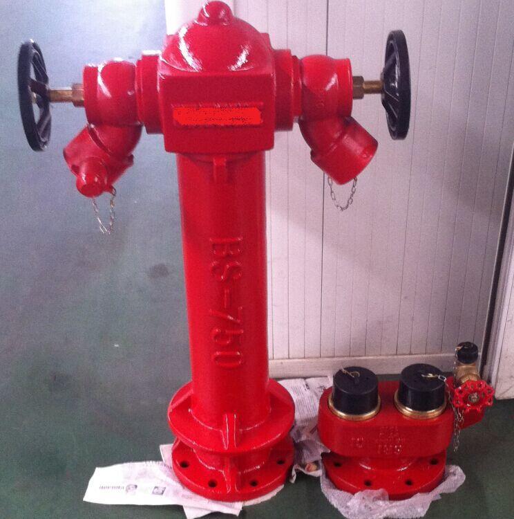 Bs 750 Pillar Fire Hydrant With 2 Landing Valves